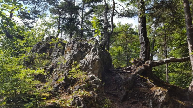 Bärenfelsen beim Aufstieg