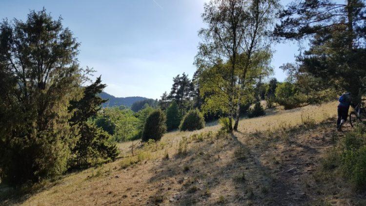 Wacholderwanderweg - durch die Bayerische Toskana