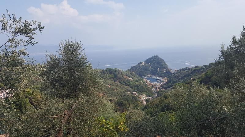 Blick auf Portofino, Ligurien