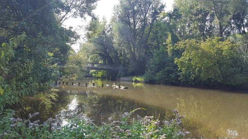 Radtour von Lauf über die Pegnitzauen zum Wöhrder See Nürnberg und zurück
