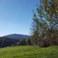 Radtour Großviehberg Sittenbachtal