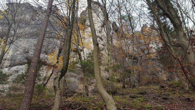 Mittelbergwand bei Hirschbach
