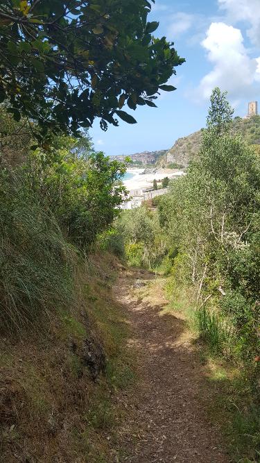 Blick zurück auf Marina di Camerota beim Einstieg