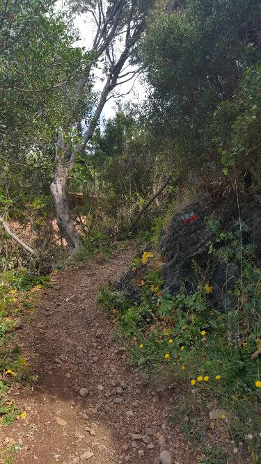Wanderweg zur Baia degli Infreschi im Cilento