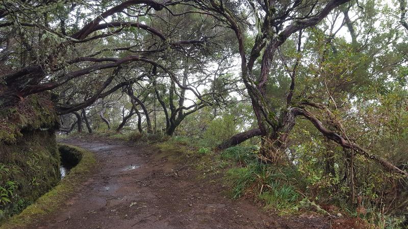 Madeira Levadaweg 25 Fontes