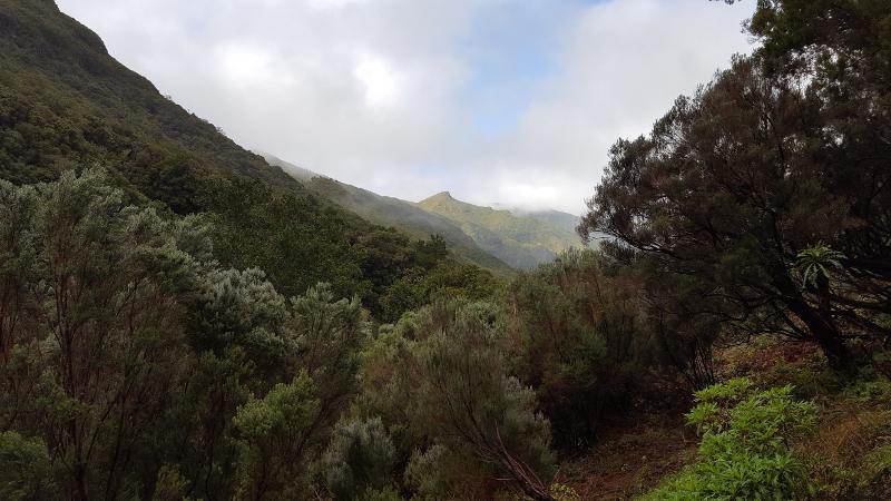 Madeira Levadawanderung 25 Fontes