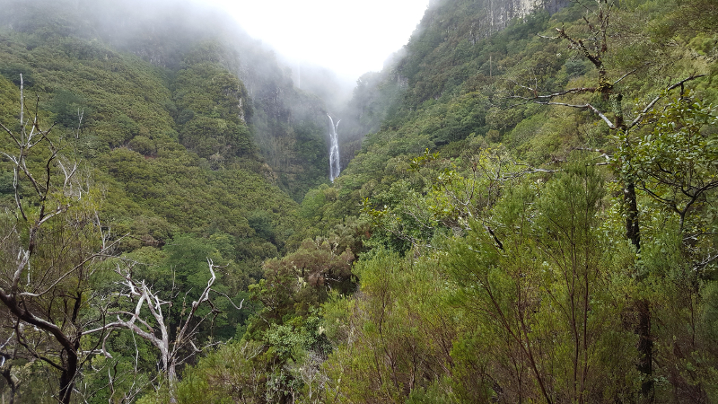 Madeira, Wasserfall bei Levadawanderung 25 Fontes