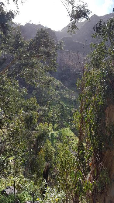 Madeira Wanderung Nonnental