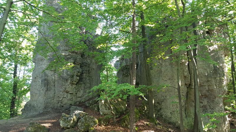 Wanderweg Orchideenweg bei Fürnried