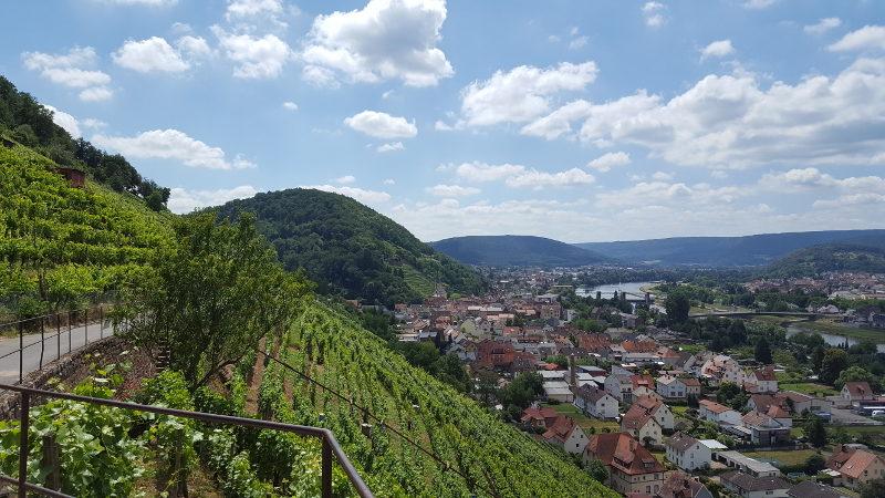 Mainradweg von Miltenberg bis Aschaffenburg
