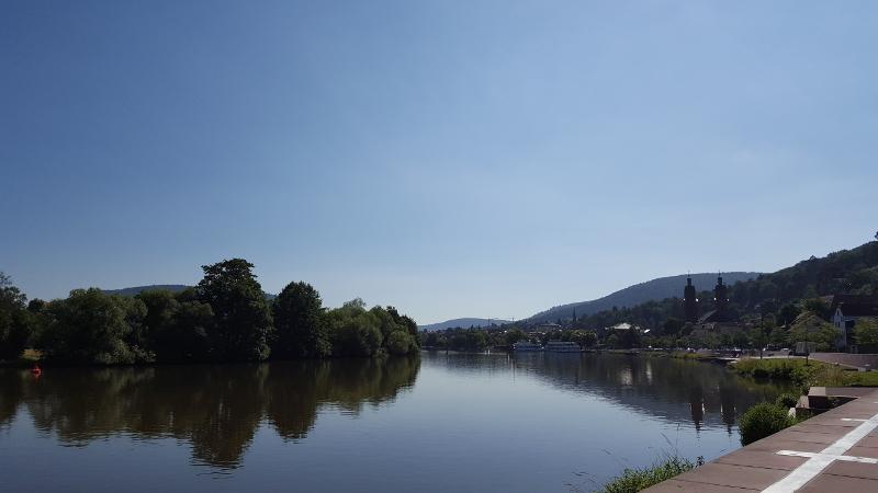 Mainradweg von Miltenberg bis Aschaffenburg - Mainradweg Blick zurück auf Miltenberg