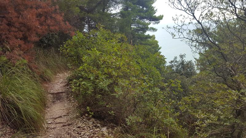 Wanderweg-zum-Passo-del-Lupo