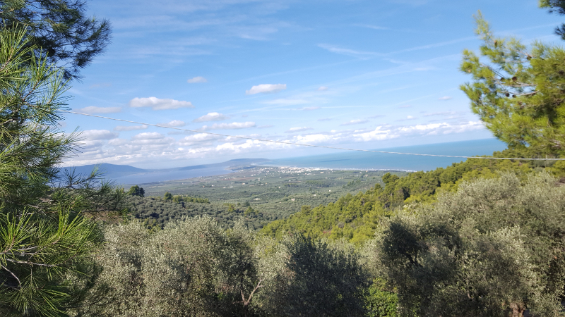 Gargano Wanderung bei Rodi, Aussicht