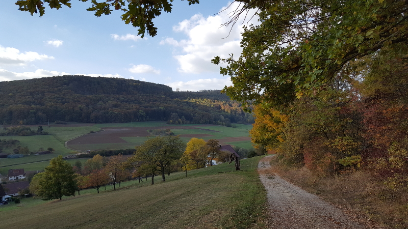 Wanderweg Reicheneck