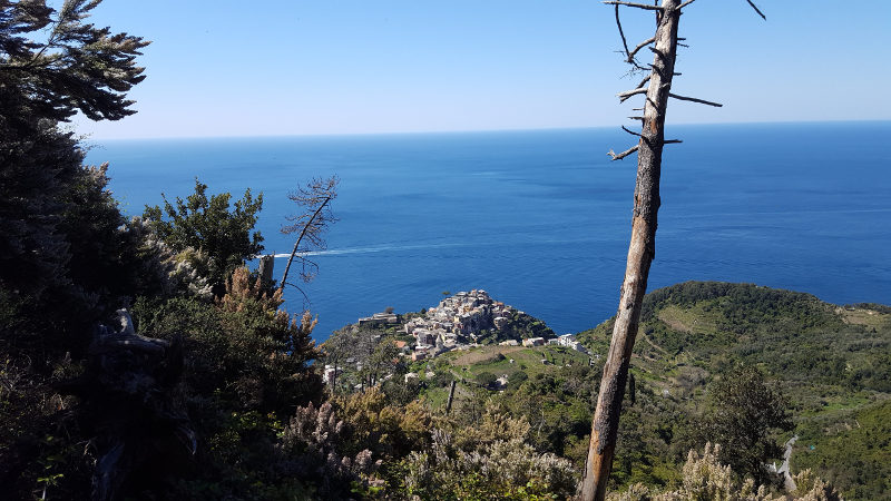 Aussicht auf Corniglia Cinque Terre