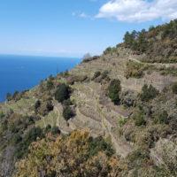Wanderweg Corniglia nach Manarola Cinque Terre