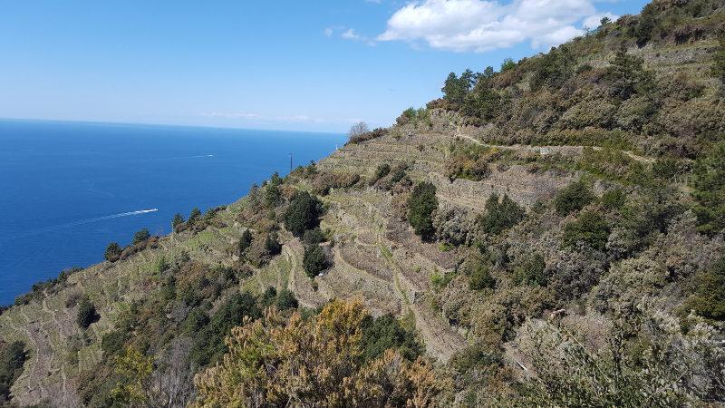 Wanderung von Corniglia nach Manarola in der Cinque Terre, Ligurien