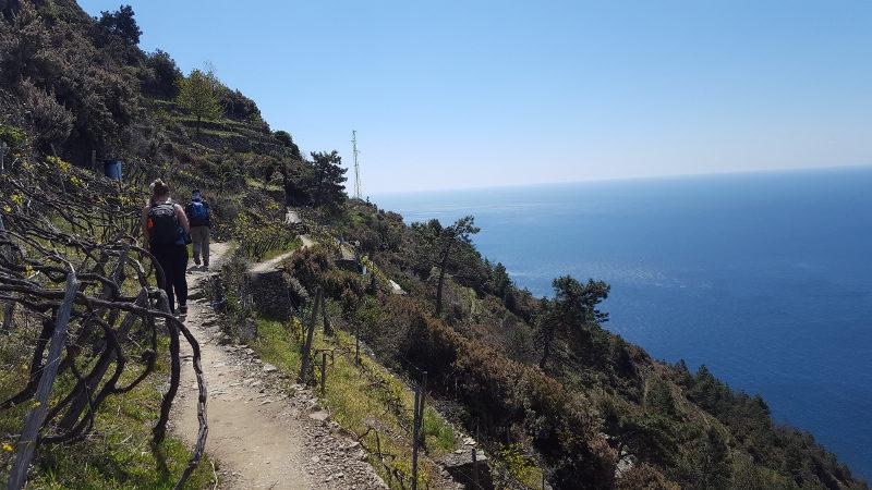Wanderweg nach Manarola in der Cinque Terre