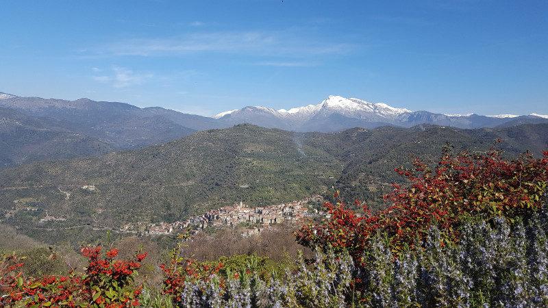 Wanderung von Apricale nach Perinaldo - Blick auf Apricale