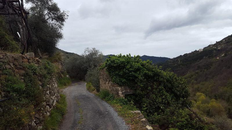 Wanderweg von Ceriana nach Taggia