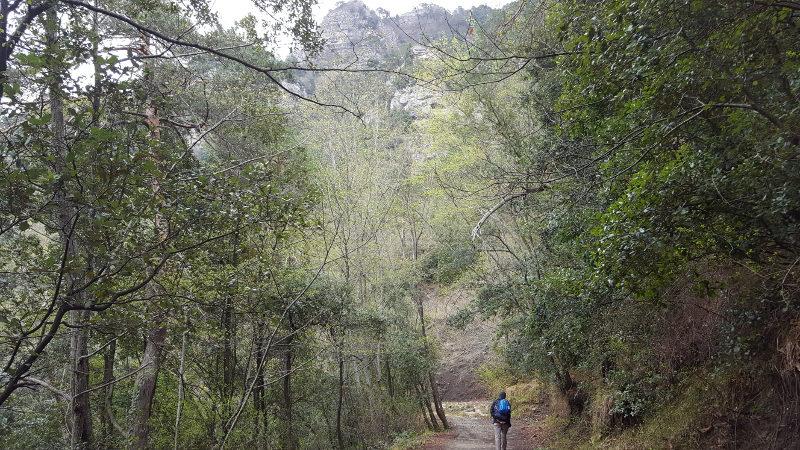 Wanderweg nach Bajardo Nähe Monte Bignone