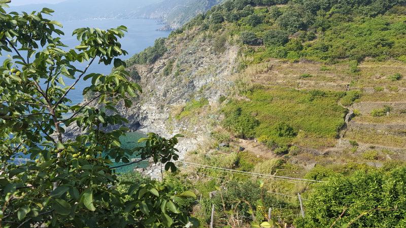 Küstenwanderung von Vernazza nach Corniglia