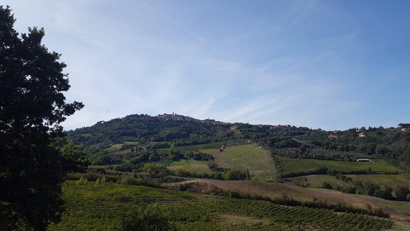 Blick auf Montepulciano