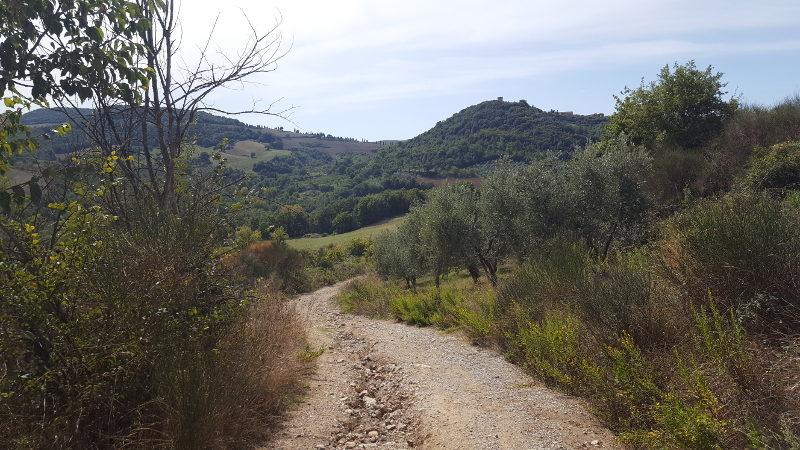 Wandertour von Montepulciano nach Pienza