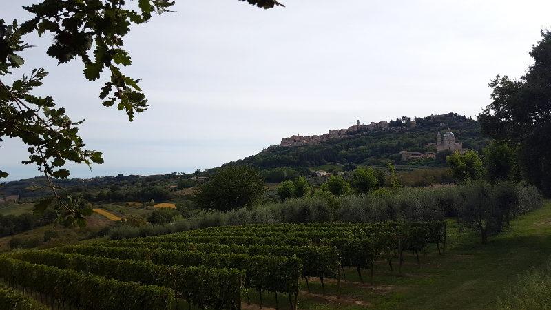 Wandertour von Montepulciano nach Pienza, Blick zurück auf Montepulciano