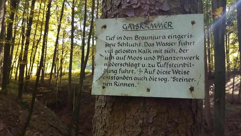 Gaiskammer-Schlucht bei Förrenbach