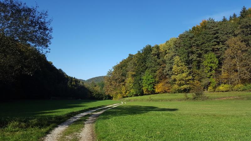 Wanderung Molsberger Tal