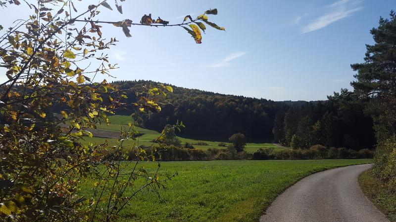 Wanderung Molsberger Tal - von See nach Molsbach