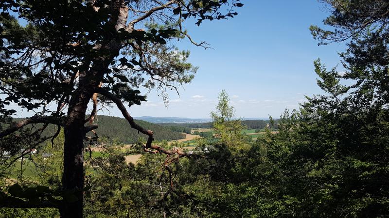 Aussicht vom Kalmusfels