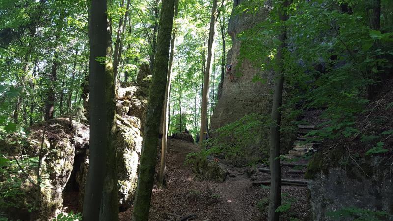 Kletterfelsen bei Illschwang