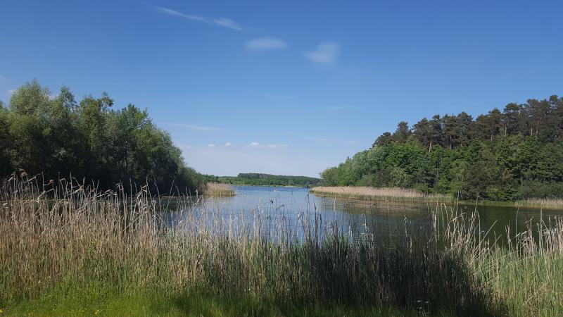 Rothsee im Fränkischen Seenland