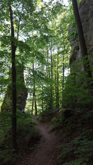 Wanderweg beim Kalmusfels