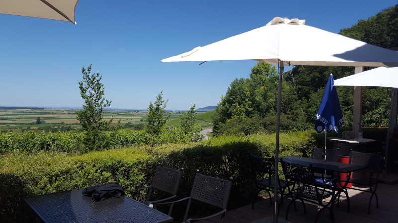 Aussicht von Weinparadiesscheune Bullenheim