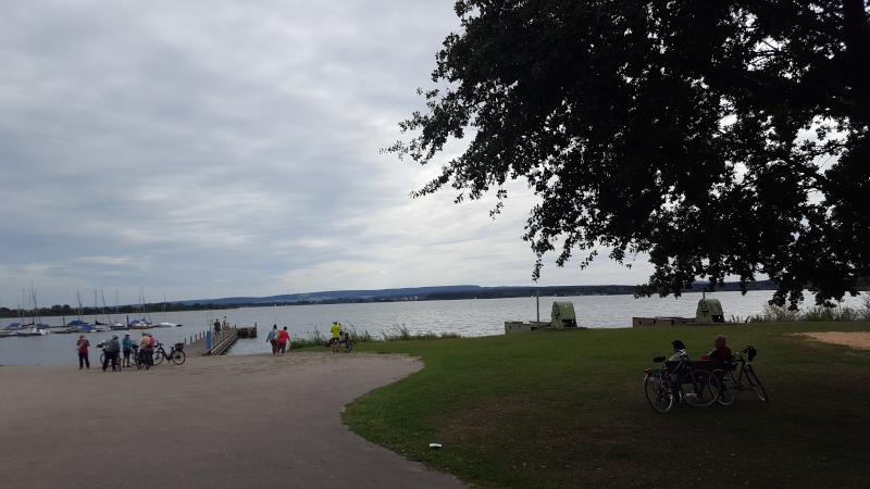 Ufer des Altmühlsees