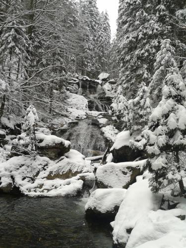Bayerischer Wald Risslochfaelle