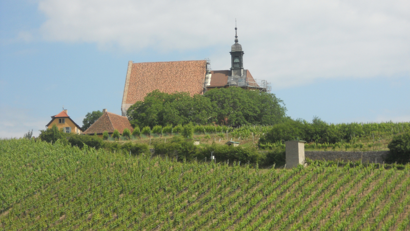 Volkach Maria im Weingarten