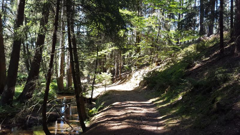 Radtour entlang des Röthenbachs