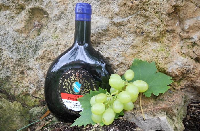 Der Frankenwein - Rebsorten und Qualitätsstufen